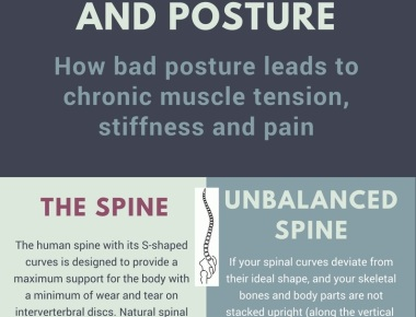 Posture and muscle tension infographic short